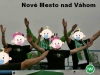 sered_nmnv